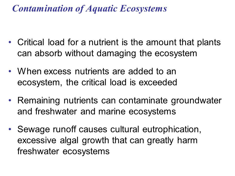 Contamination of Aquatic Ecosystems Critical load for a nutrient is the amount that plants can absorb without damaging the ecosystem When excess nutrients are added to an ecosystem, the critical load is exceeded Remaining nutrients can contaminate groundwater and freshwater and marine ecosystems Sewage runoff causes cultural eutrophication, excessive algal growth that can greatly harm freshwater ecosystems