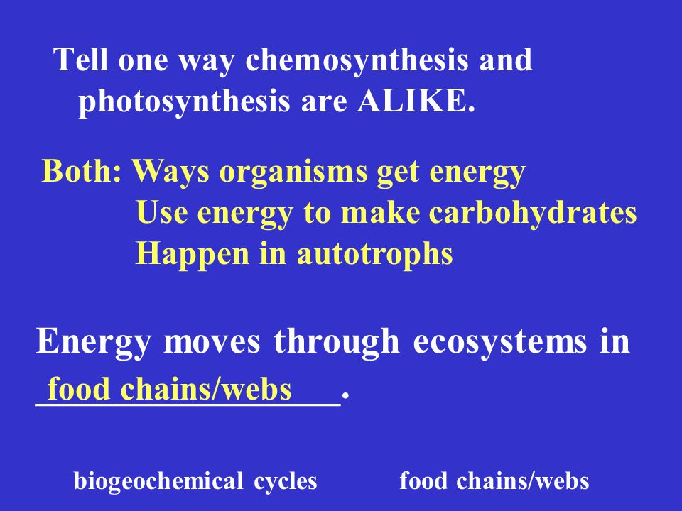 Tell one way chemosynthesis and photosynthesis are ALIKE.