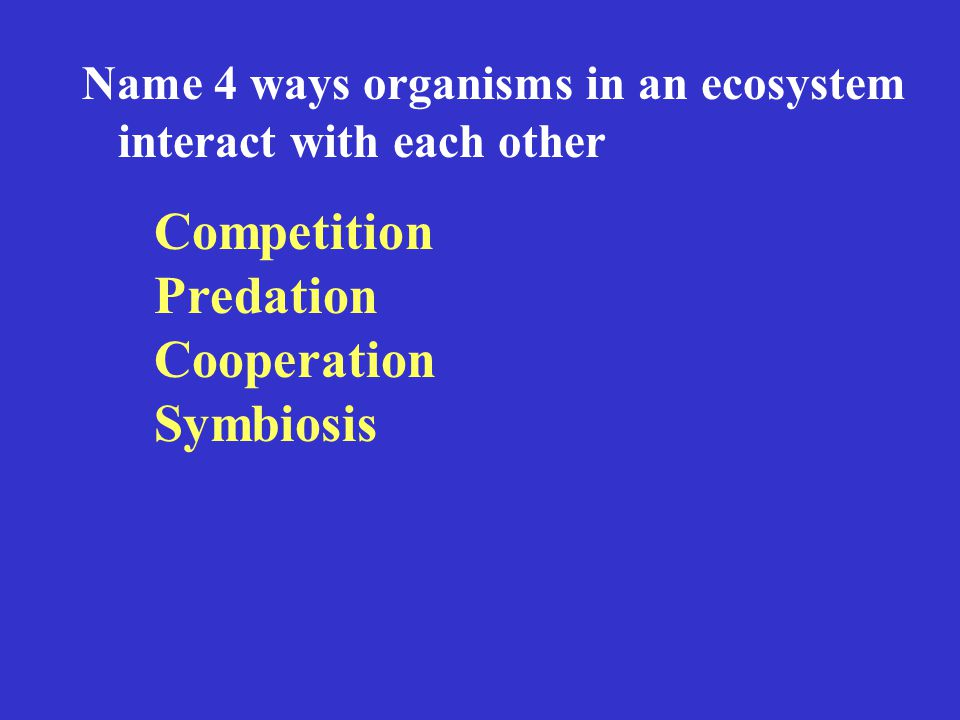 Name 4 ways organisms in an ecosystem interact with each other Competition Predation Cooperation Symbiosis