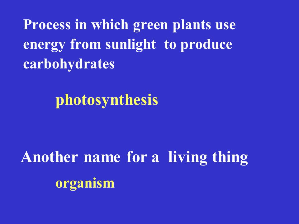 Process in which green plants use energy from sunlight to produce carbohydrates photosynthesis Another name for a living thing organism