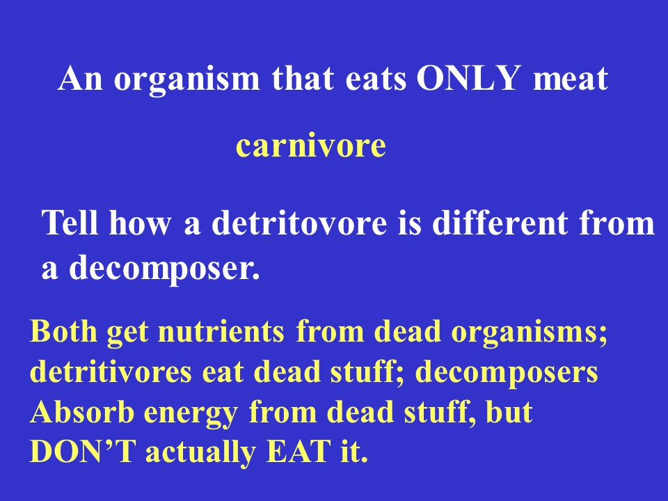 An organism that eats ONLY meat carnivore Tell how a detritovore is different from a decomposer.