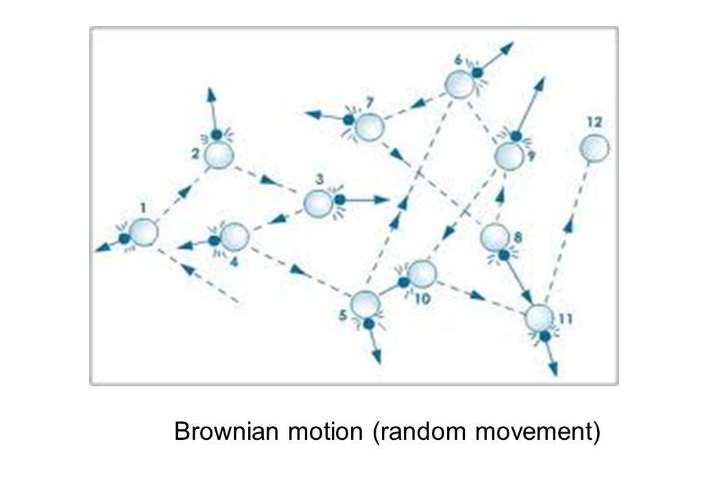 Brownian motion (random movement)