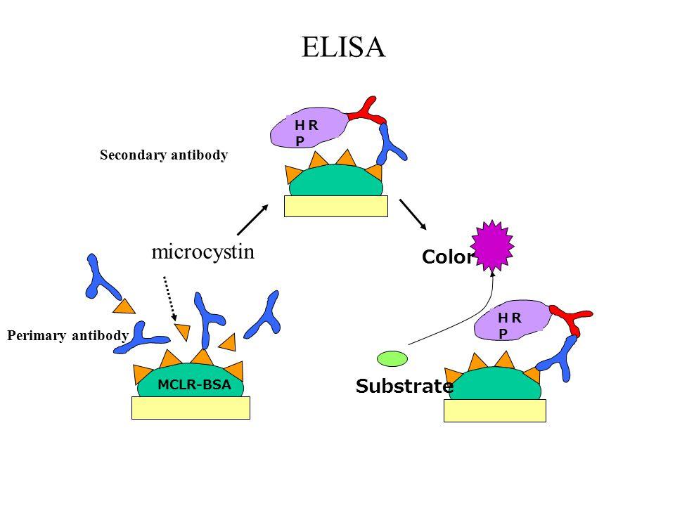 ELISA Secondary antibody HR P Substrate Color MCLR-BSA Perimary antibody microcystin