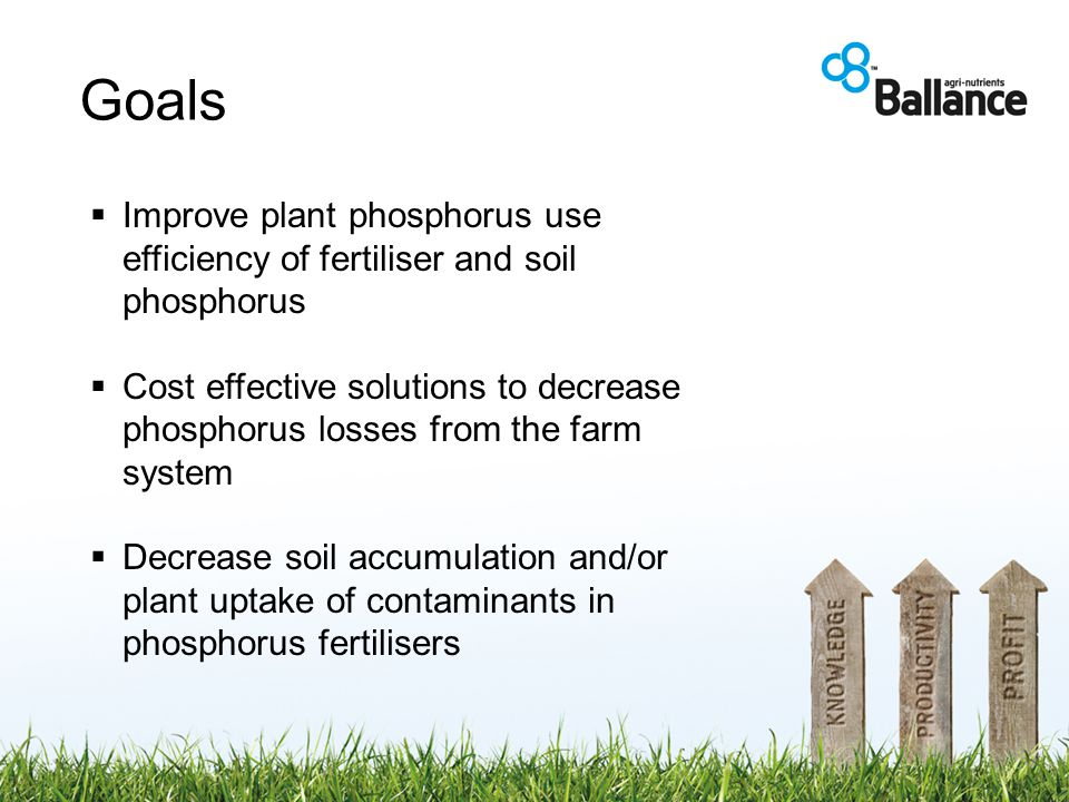 Goals  Improve plant phosphorus use efficiency of fertiliser and soil phosphorus  Cost effective solutions to decrease phosphorus losses from the farm system  Decrease soil accumulation and/or plant uptake of contaminants in phosphorus fertilisers