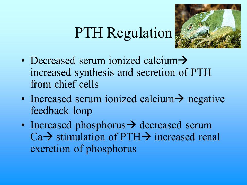 Phosphorus Clinical Pathology Normal serum phosphorus: 1-5mg/dL