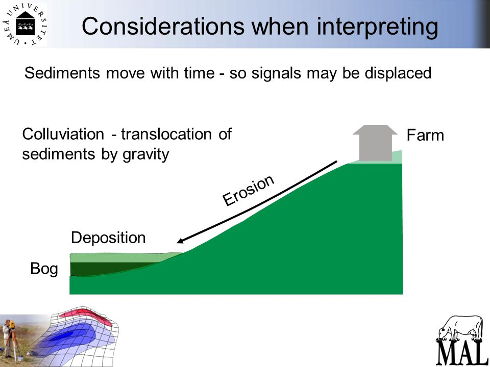 Considerations when interpreting Farm Bog Erosion Deposition Colluviation - translocation of sediments by gravity Sediments move with time - so signals may be displaced