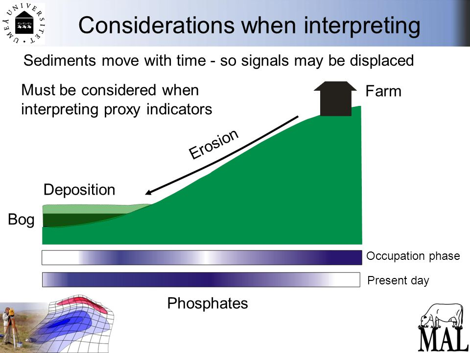Considerations when interpreting Farm Bog Erosion Deposition Must be considered when interpreting proxy indicators Sediments move with time - so signals may be displaced Phosphates Occupation phase Present day