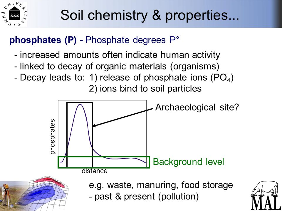 Soil chemistry & properties... phosphates (P) - Phosphate degrees P° - increased amounts often indicate human activity - linked to decay of organic ma