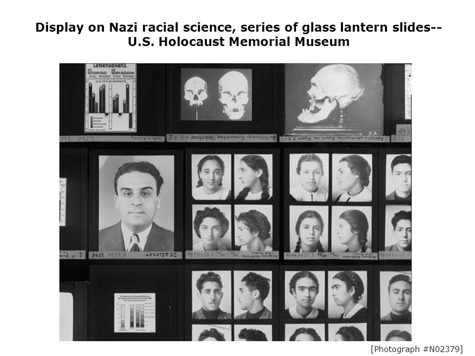 Display on Nazi racial science, series of glass lantern slides-- U.S.