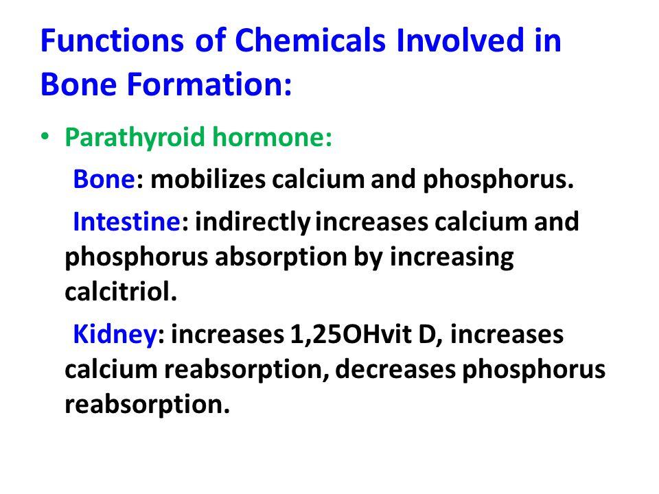 Functions of Chemicals Involved in Bone Formation: Parathyroid hormone: Bone: mobilizes calcium and phosphorus.