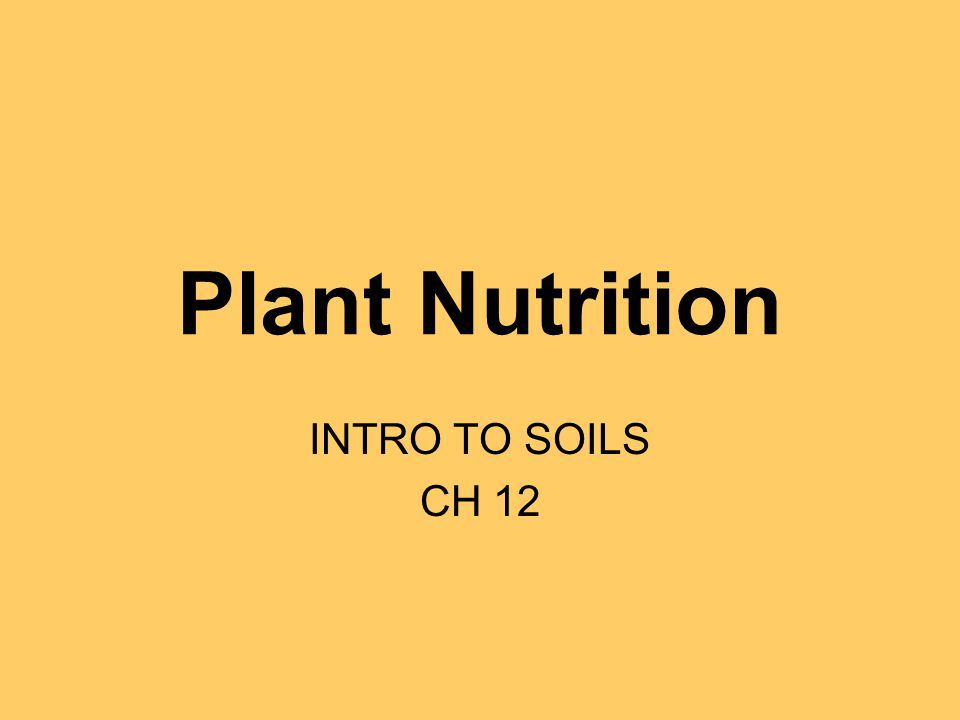 Plant Nutrition INTRO TO SOILS CH 12