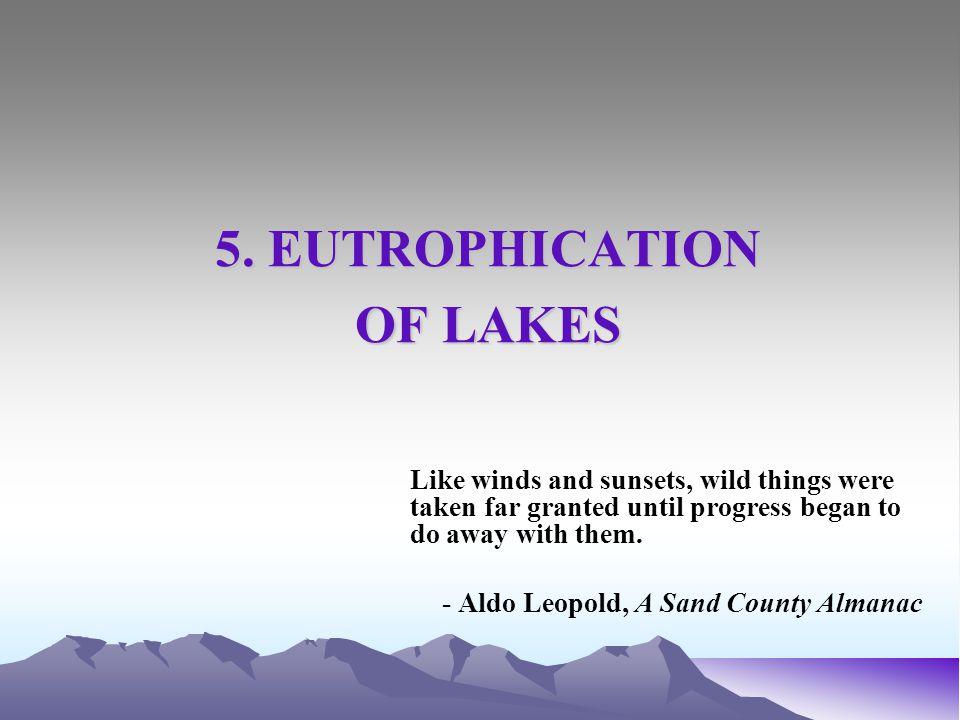 Figure 5.13.Transport regime for a compartmentalized lake ecosystem model.