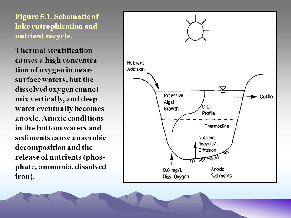 The degree of eutrophication is a continuum.