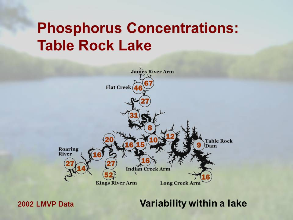 Phosphorus Concentrations: Table Rock Lake Variability within a lake 2002 LMVP Data