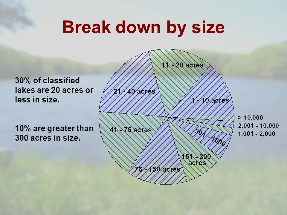 Break down by size 30% of classified lakes are 20 acres or less in size.