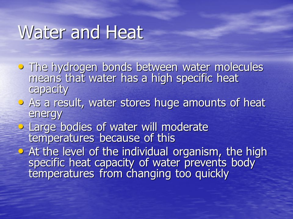 Water and Heat The hydrogen bonds between water molecules means that water has a high specific heat capacity The hydrogen bonds between water molecules means that water has a high specific heat capacity As a result, water stores huge amounts of heat energy As a result, water stores huge amounts of heat energy Large bodies of water will moderate temperatures because of this Large bodies of water will moderate temperatures because of this At the level of the individual organism, the high specific heat capacity of water prevents body temperatures from changing too quickly At the level of the individual organism, the high specific heat capacity of water prevents body temperatures from changing too quickly