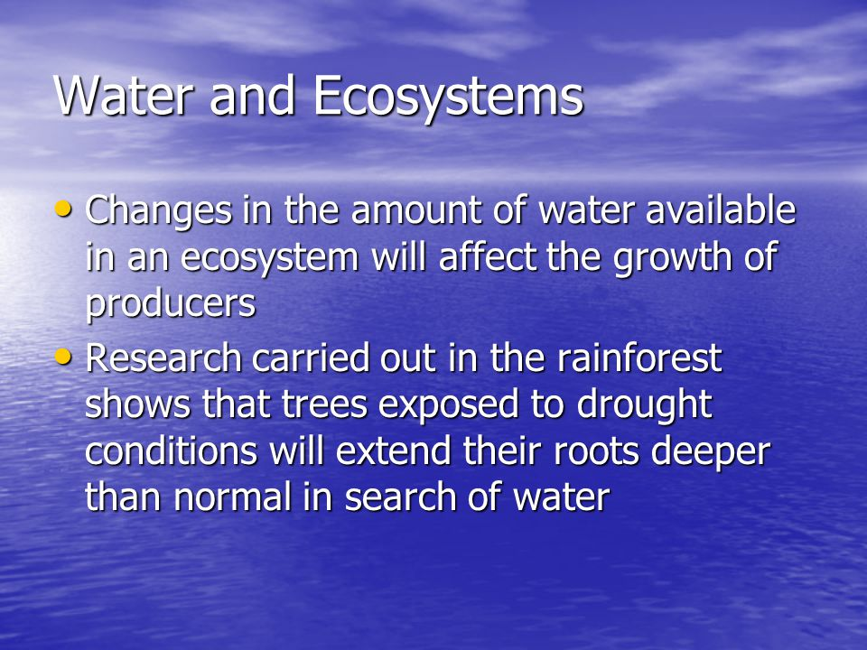 Water and Ecosystems Changes in the amount of water available in an ecosystem will affect the growth of producers Changes in the amount of water available in an ecosystem will affect the growth of producers Research carried out in the rainforest shows that trees exposed to drought conditions will extend their roots deeper than normal in search of water Research carried out in the rainforest shows that trees exposed to drought conditions will extend their roots deeper than normal in search of water