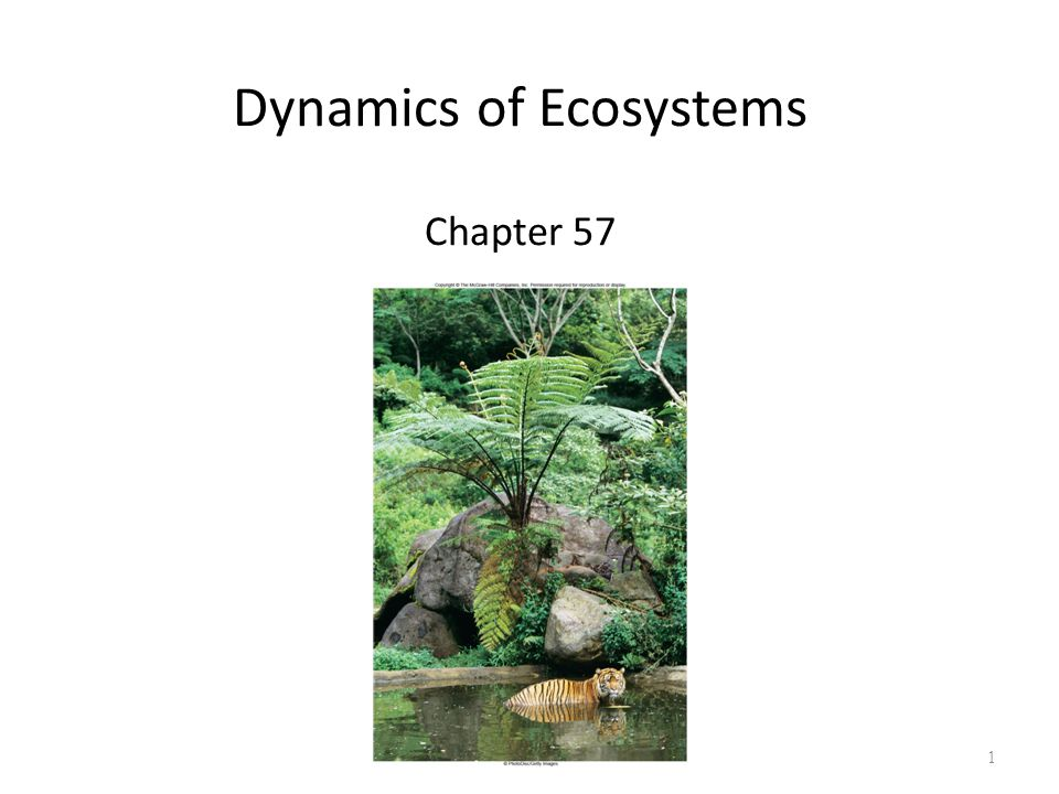 1 Dynamics of Ecosystems Chapter 57