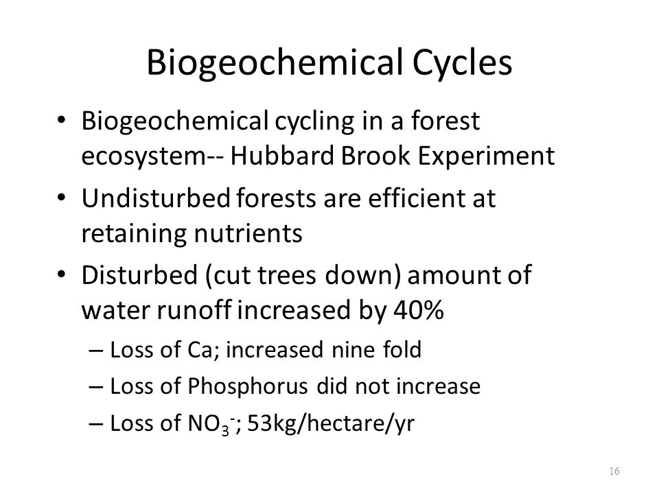 16 Biogeochemical Cycles Biogeochemical cycling in a forest ecosystem-- Hubbard Brook Experiment Undisturbed forests are efficient at retaining nutrie