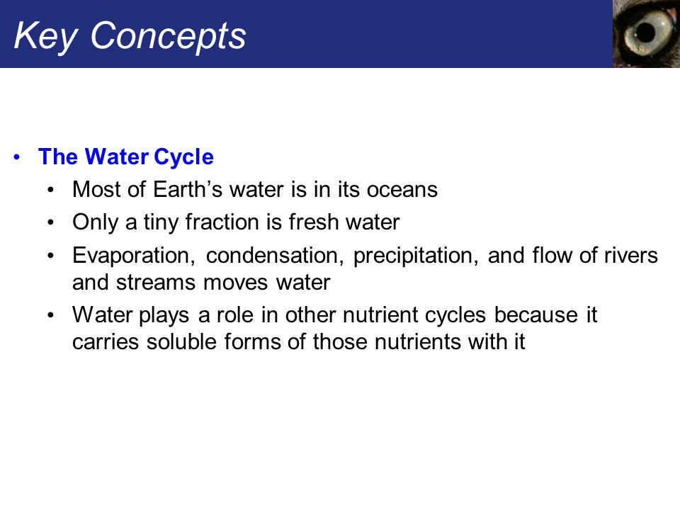 Key Concepts The Water Cycle Most of Earth's water is in its oceans Only a tiny fraction is fresh water Evaporation, condensation, precipitation, and flow of rivers and streams moves water Water plays a role in other nutrient cycles because it carries soluble forms of those nutrients with it