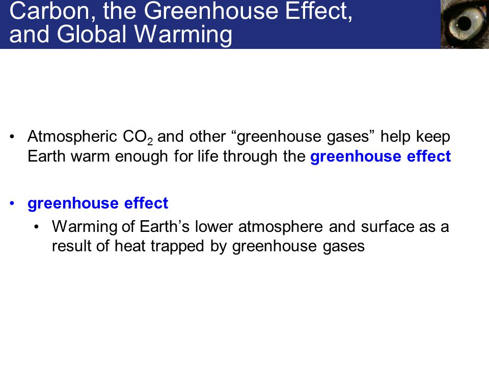 Carbon, the Greenhouse Effect, and Global Warming Atmospheric CO 2 and other greenhouse gases help keep Earth warm enough for life through the greenhouse effect greenhouse effect Warming of Earth's lower atmosphere and surface as a result of heat trapped by greenhouse gases