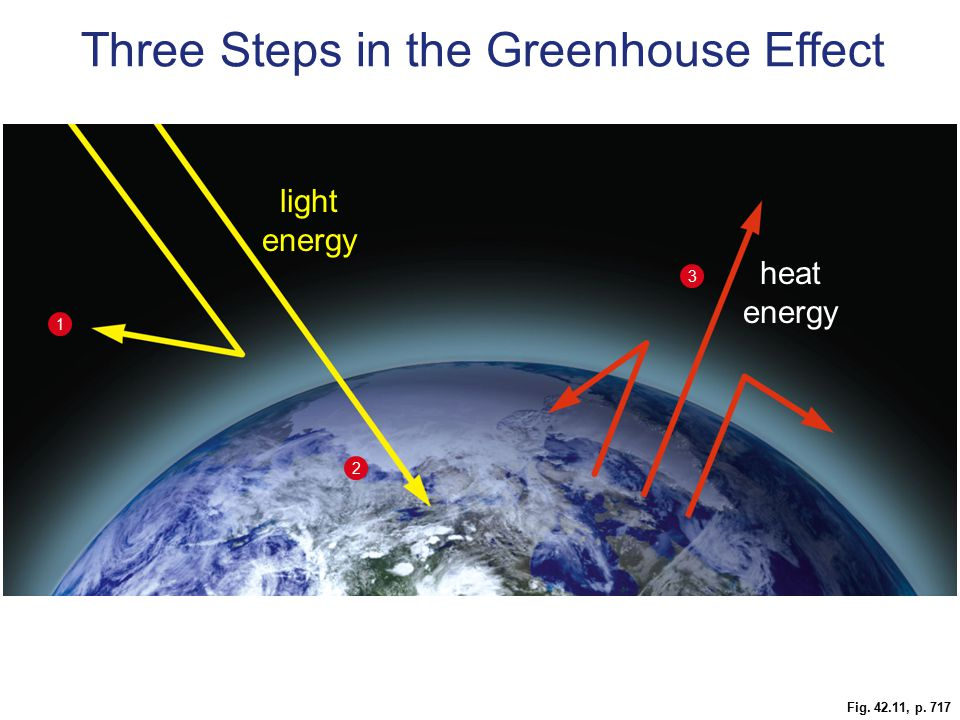 Fig. 42.11, p. 717 heat energy light energy 1 2 3 Three Steps in the Greenhouse Effect