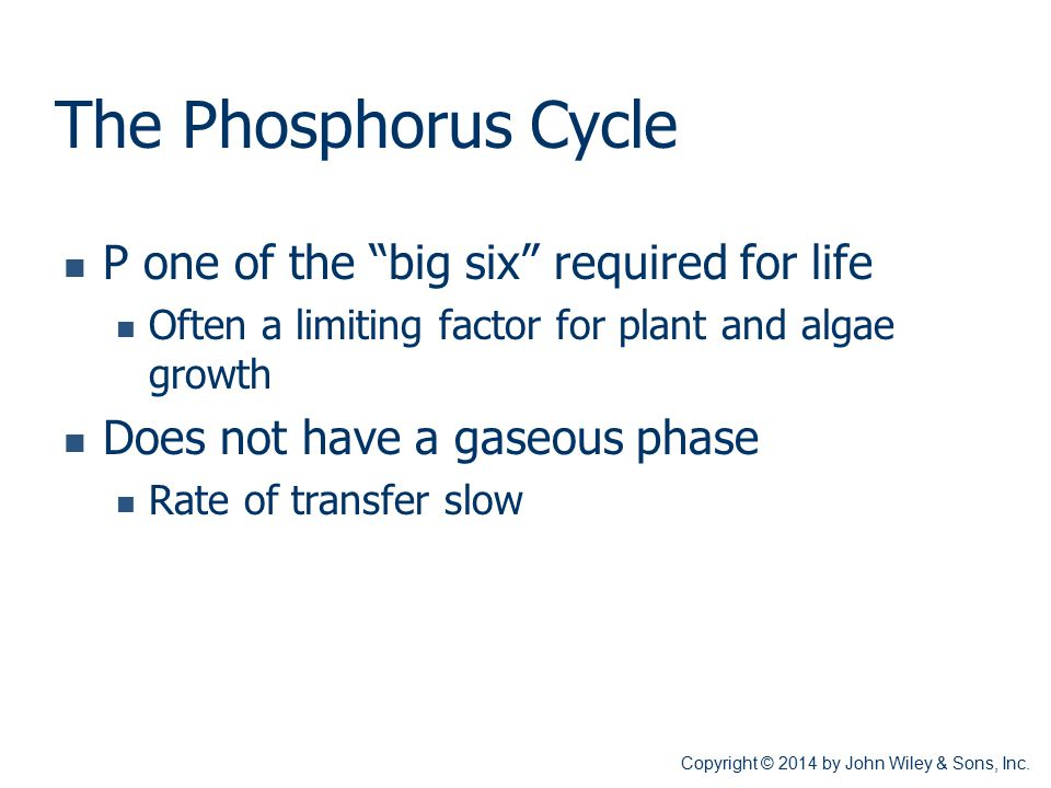 """The Phosphorus Cycle P one of the """"big six"""" required for life Often a limiting factor for plant and algae growth Does not have a gaseous phase Rate of"""