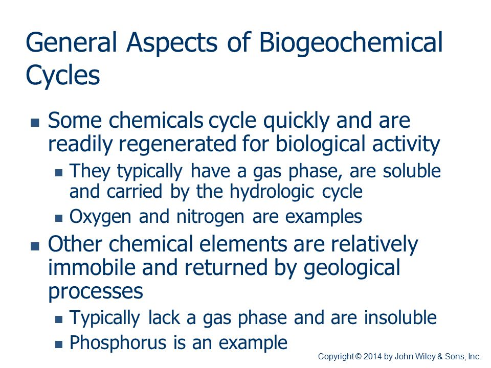 General Aspects of Biogeochemical Cycles Some chemicals cycle quickly and are readily regenerated for biological activity They typically have a gas ph