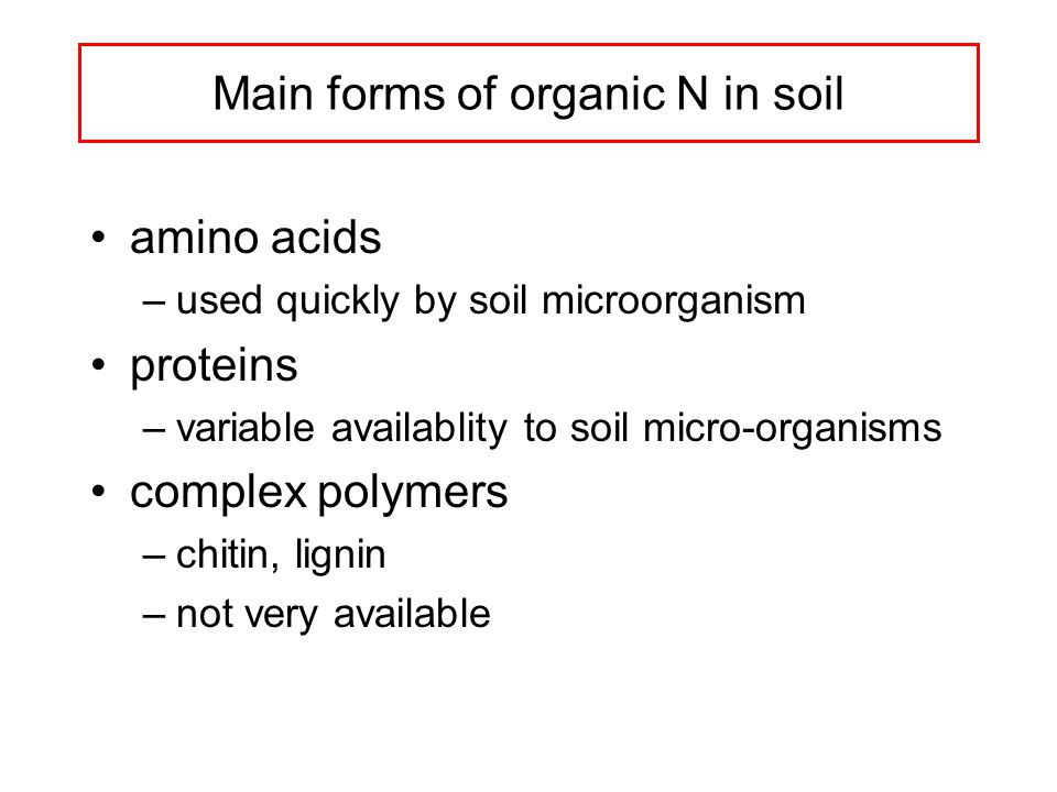 Main forms of organic N in soil amino acids –used quickly by soil microorganism proteins –variable availablity to soil micro-organisms complex polymers –chitin, lignin –not very available
