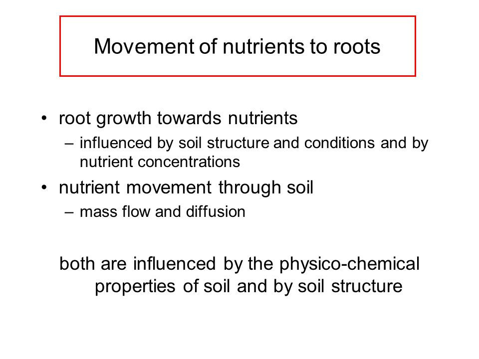 Movement of nutrients to roots root growth towards nutrients –influenced by soil structure and conditions and by nutrient concentrations nutrient movement through soil –mass flow and diffusion both are influenced by the physico-chemical properties of soil and by soil structure