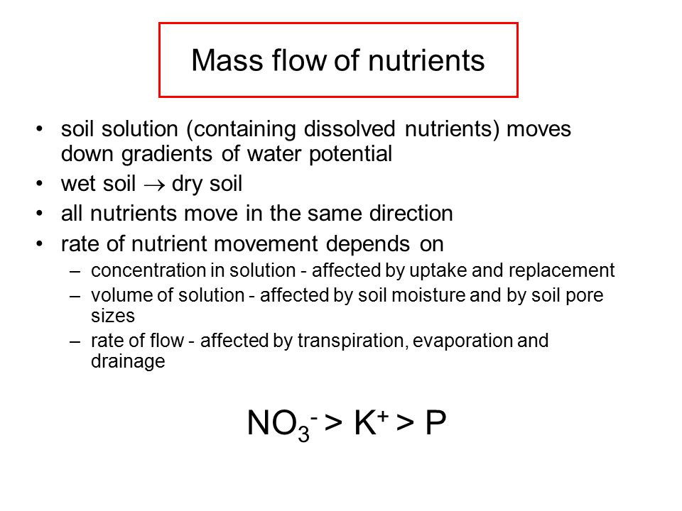 Mass flow of nutrients soil solution (containing dissolved nutrients) moves down gradients of water potential wet soil  dry soil all nutrients move in the same direction rate of nutrient movement depends on –concentration in solution - affected by uptake and replacement –volume of solution - affected by soil moisture and by soil pore sizes –rate of flow - affected by transpiration, evaporation and drainage NO 3 - > K + > P