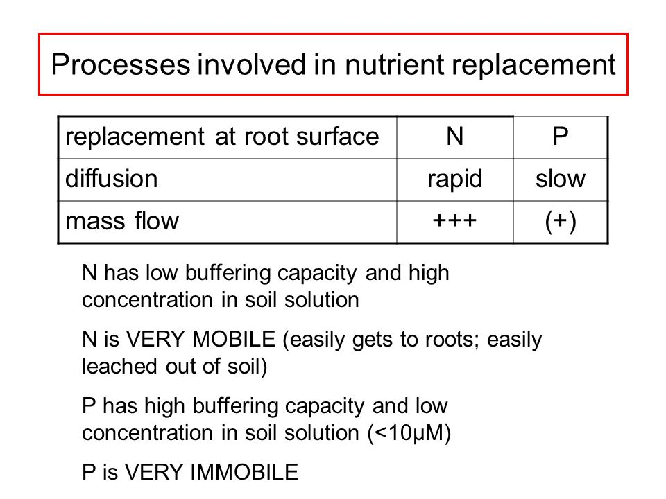Processes involved in nutrient replacement replacement at root surfaceNP diffusionrapidslow mass flow+++(+) N has low buffering capacity and high concentration in soil solution N is VERY MOBILE (easily gets to roots; easily leached out of soil) P has high buffering capacity and low concentration in soil solution (<10µM) P is VERY IMMOBILE