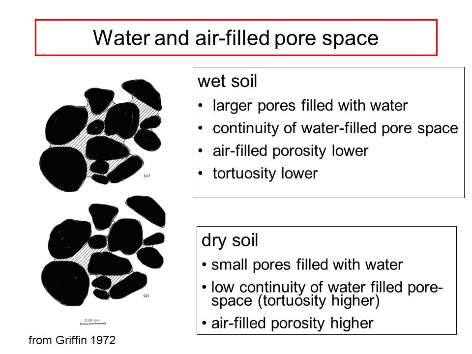 Water and air-filled pore space wet soil larger pores filled with water continuity of water-filled pore space air-filled porosity lower tortuosity lower dry soil small pores filled with water low continuity of water filled pore- space (tortuosity higher) air-filled porosity higher from Griffin 1972