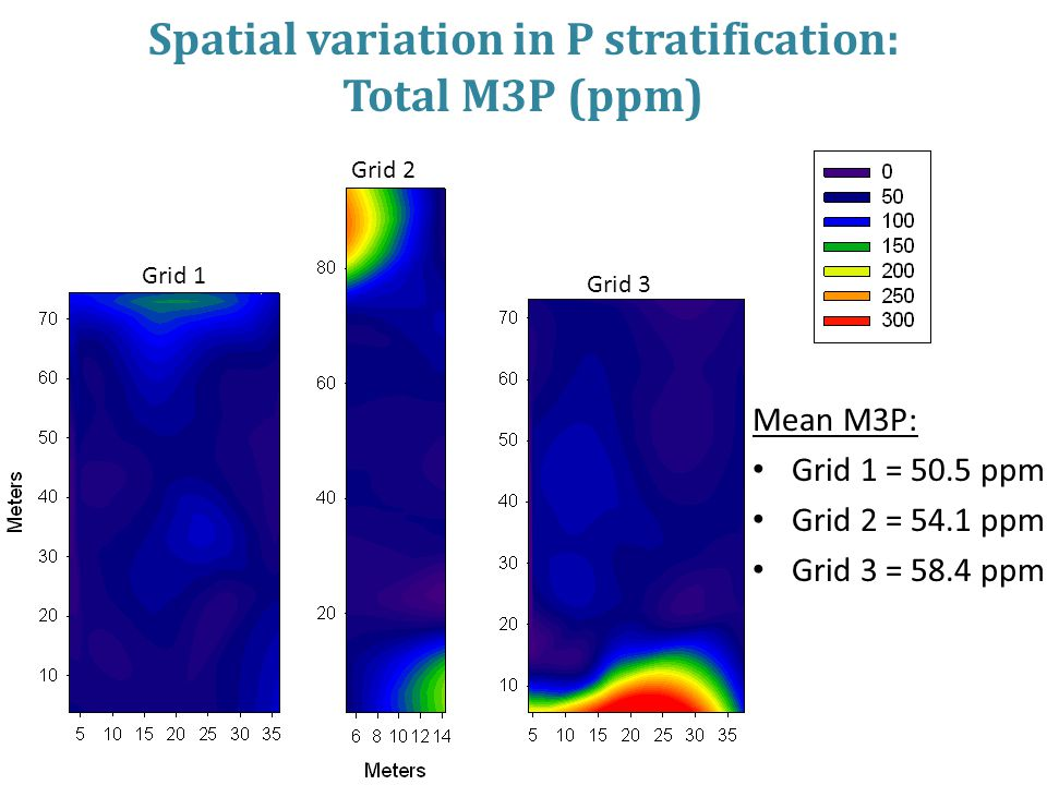 Spatial variation in P stratification: Total M3P (ppm) Mean M3P: Grid 1 = 50.5 ppm Grid 2 = 54.1 ppm Grid 3 = 58.4 ppm Grid 1 Grid 2 Grid 3