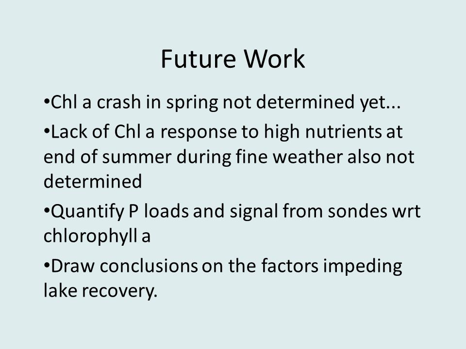 Future Work Chl a crash in spring not determined yet...