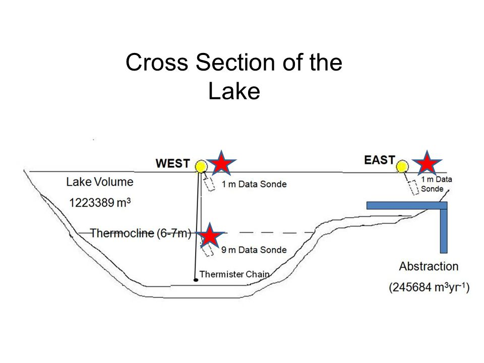 Cross Section of the Lake