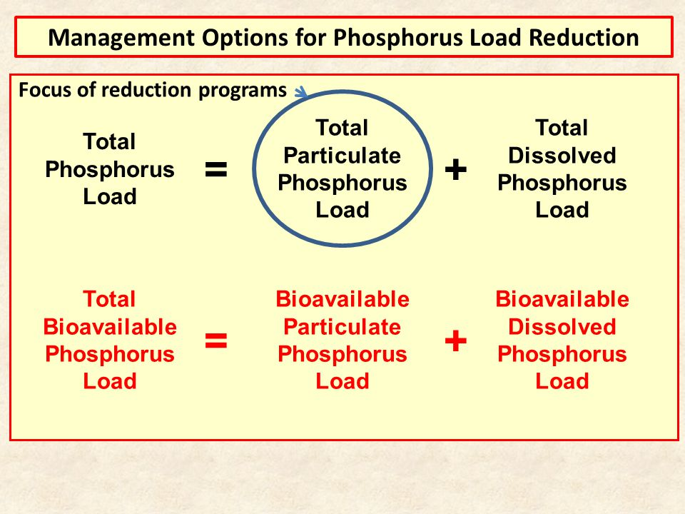 Total Phosphorus Load Total Particulate Phosphorus Load Total Dissolved Phosphorus Load += Total Bioavailable Phosphorus Load += Bioavailable Particulate Phosphorus Load Bioavailable Dissolved Phosphorus Load Management Options for Phosphorus Load Reduction Focus of reduction programs