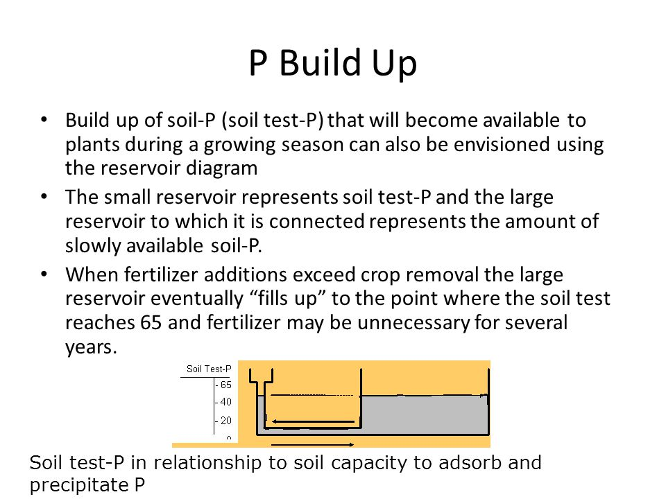P Build Up Build up of soil-P (soil test-P) that will become available to plants during a growing season can also be envisioned using the reservoir diagram The small reservoir represents soil test-P and the large reservoir to which it is connected represents the amount of slowly available soil-P.