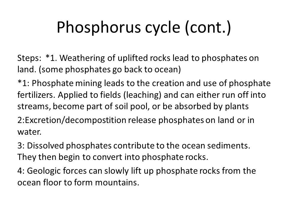 Phosphorus cycle (cont.) Steps: *1. Weathering of uplifted rocks lead to phosphates on land. (some phosphates go back to ocean) *1: Phosphate mining l
