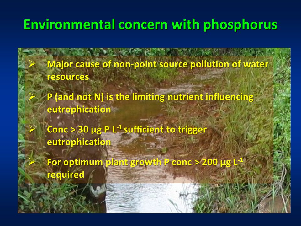 Environmental concern with phosphorus  Major cause of non-point source pollution of water resources  P (and not N) is the limiting nutrient influencing eutrophication  Conc > 30 µg P L -1 sufficient to trigger eutrophication  For optimum plant growth P conc > 200 µg L -1 required