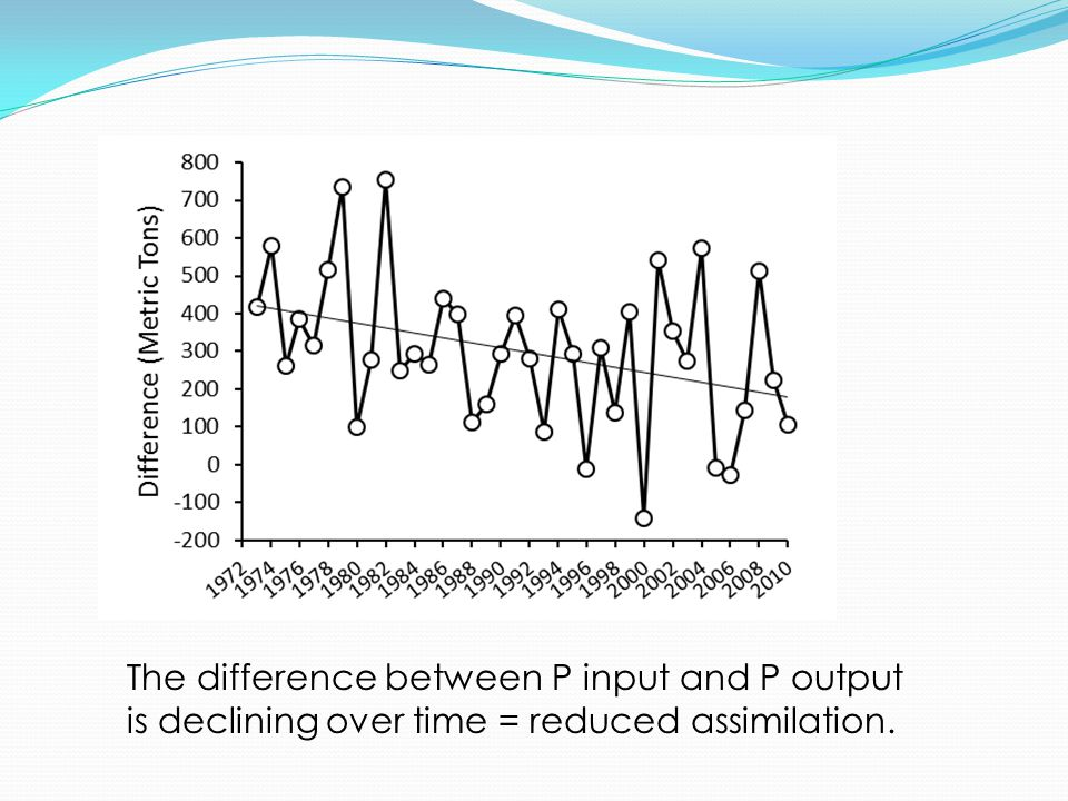 The difference between P input and P output is declining over time = reduced assimilation.