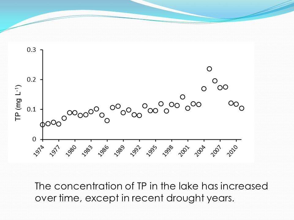 The concentration of TP in the lake has increased over time, except in recent drought years.