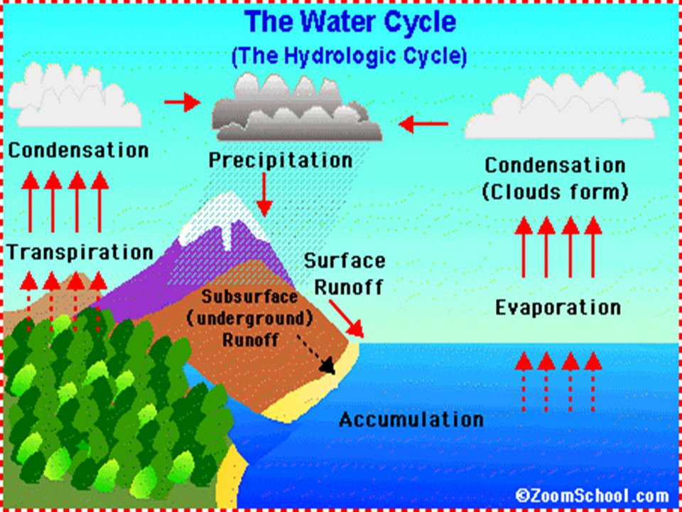 Some Basic Watershed Terms Surface Water Run-Off Ground-water Evaporation Riparian Upland Intra-Lake Inter-Lake Watershed