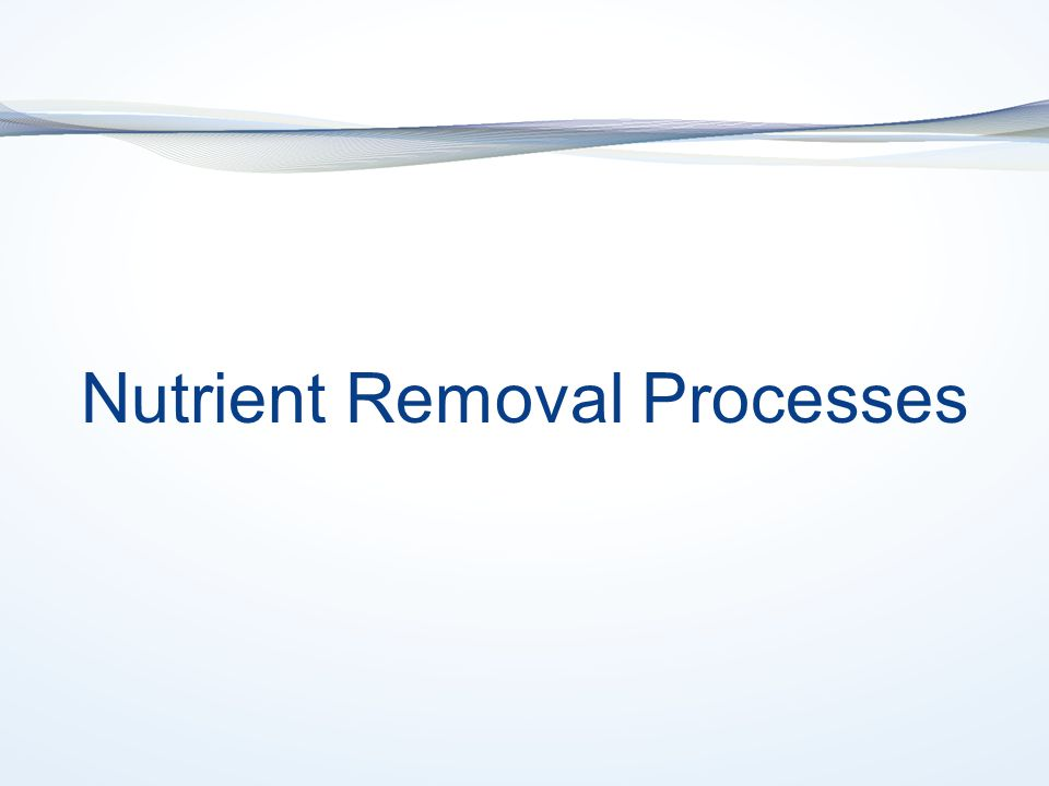 Nutrient Removal Processes