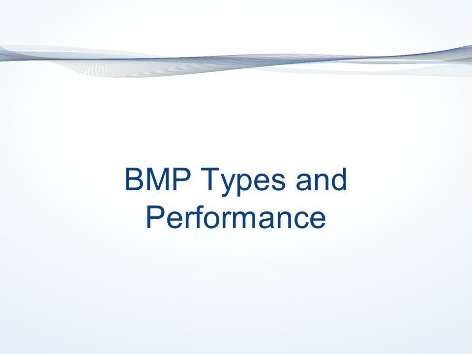 BMP Types and Performance