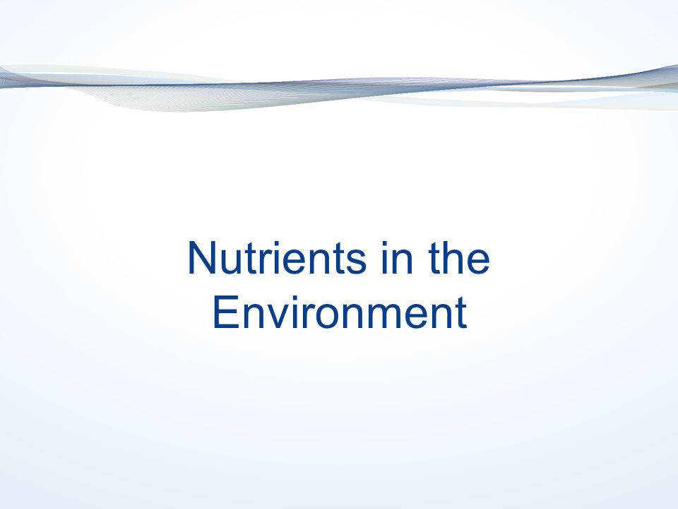 Nutrients in the Environment