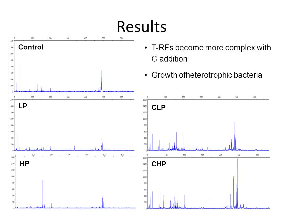 Control LP HP CLP CHP T-RFs become more complex with C addition Growth ofheterotrophic bacteria