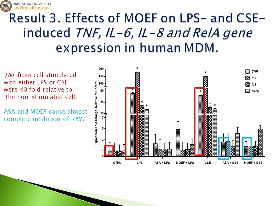 TNF from cell stimulated with either LPS or CSE were 40 fold relative to the non-stimulated cell.