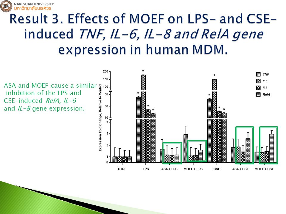 ASA and MOEF cause a similar inhibition of the LPS and CSE-induced RelA, IL-6 and IL-8 gene expression.