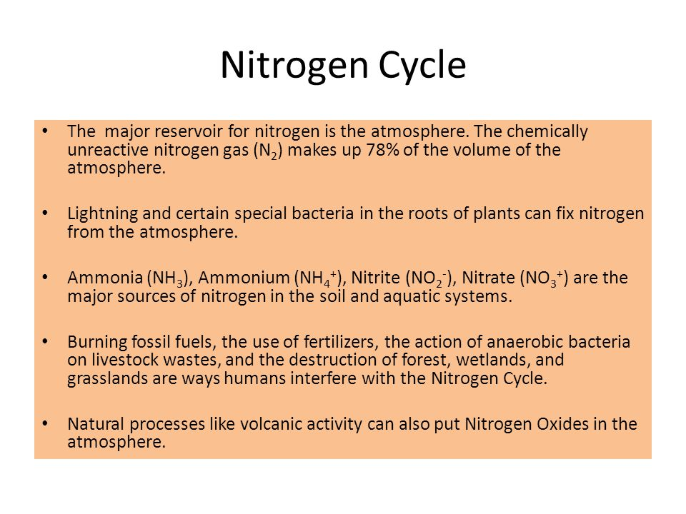 The major reservoir for nitrogen is the atmosphere. The chemically unreactive nitrogen gas (N 2 ) makes up 78% of the volume of the atmosphere. Lightn